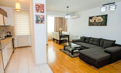 Apartament 2 camere Spitalul Bagdasar-Arseni, Dimitrie Leonida